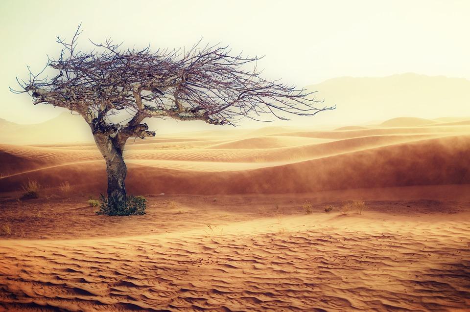 Klimawandel: ein heikles Thema. Worte  spielen eine entscheidende Rolle